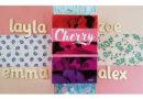"""""""Cherry"""" di Lindsey Rosin: uno young adult con tutti i pezzi al posto giusto!"""